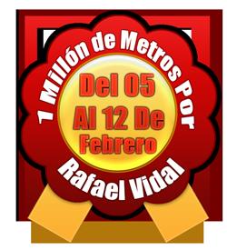 """Están disponibles en PDF los certificados de nuestros nadadores y nadadoras que participaron en el evento """"Un millón de metros por Rafael Vidal"""" 2017."""
